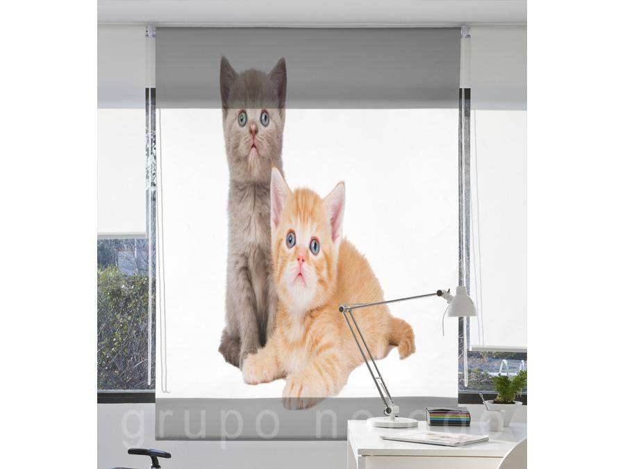 Stores enrollables Cats